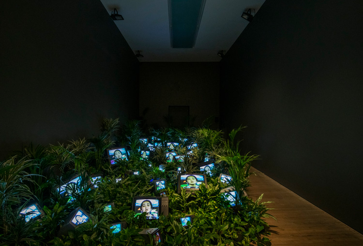 Nam June Paik. TV Garden 1974-1977 (2002). Installation view, Tate Modern 2019. Live plants, cathode-ray tube televisions and video, colour, sound installation dimensions variable. Kunstsammlung Nordrhein-Westfalen, Dusseldorf. Photo: © Tate (Andrew Dunkley).