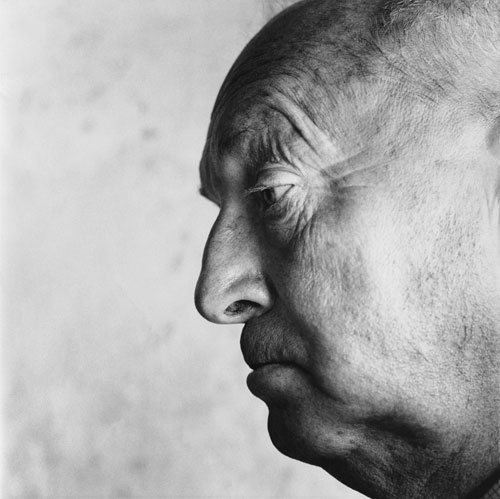 Close-up profile head shot of writer-lepidopterist Vladimir Nabokov.