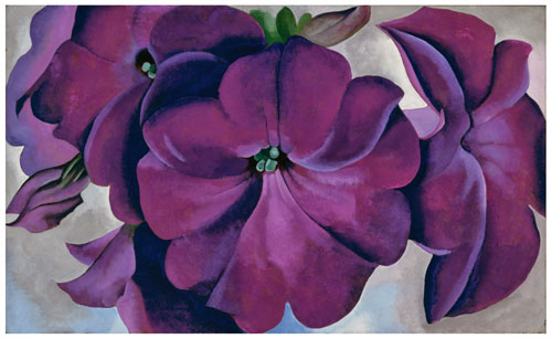 Georgia O'Keeffe, American (1887-1986). Petunias, 1925. Oil on board, 18 x 30 in. Fine Arts Museums of San Francisco, Museum purchase, Gift of the M. H. de Young Family, 1990.55. © Georgia O'Keeffe Museum/Artists Rights Society (ARS), New York.