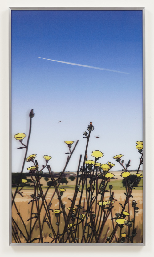Julian Opie. Jet stream. Daisies. From French landscapes, 2013. Four lenticular acrylic panels. Edition of 35. Courtesy Julian Opie and Alan Cristea Gallery.