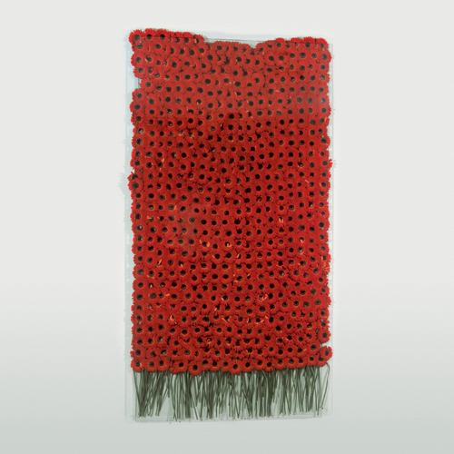 Anya Gallaccio. <em>Preserve Beauty (New York)</em>, 2003. 500 Red Gerbera, glass and fittings,  247 X 130.8 X .6 cm. © The Artist. Courtesy British Council Collection.