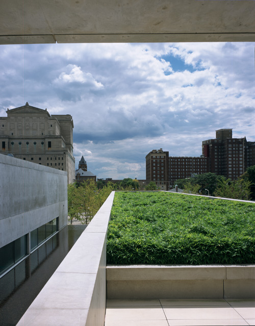 Pulitzer Building, roof garden: Pulitzer Arts Foundation. Photograph: Robert Pettus.