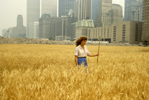 Agnes Denes. <em>Wheatfield – A Confrontation</em>, 1982. Two acres of wheat planted and harvested in Battery Park landfill, downtown Manhattan. Commissioned by Public Art Fund, New York City. 