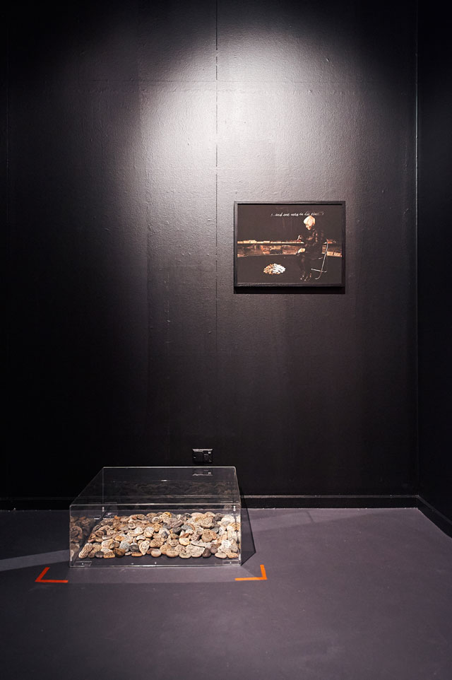 Hedy Ritterman. Touching Stones, 2016 and Henry's Mother, 2015, presented at the Jewish Museum of Australia 2016-2017.