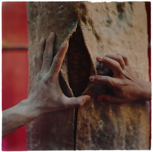 Alberto Baraya (b1968). Corte (Cutting) from Proyecto del árbol de caucho (Rubber tree project), 2008. Colour photograph. Courtesy of the artist.