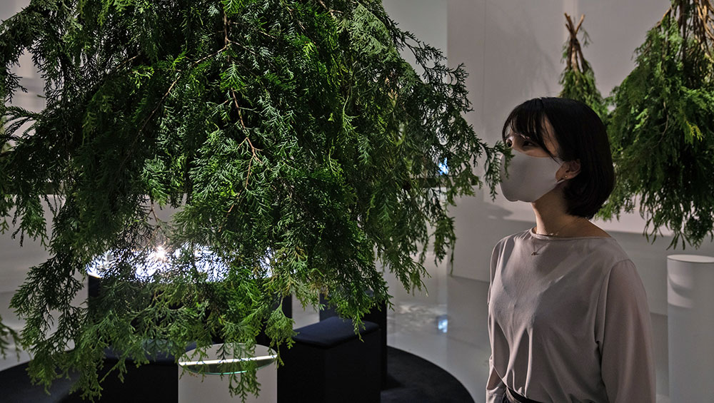 The Japanese food artist Ayako Suwa usually uses food and flavours as her medium, but the Covid pandemic means she has had to adapt her practices. In this show, she focuses instead on our sense of smell