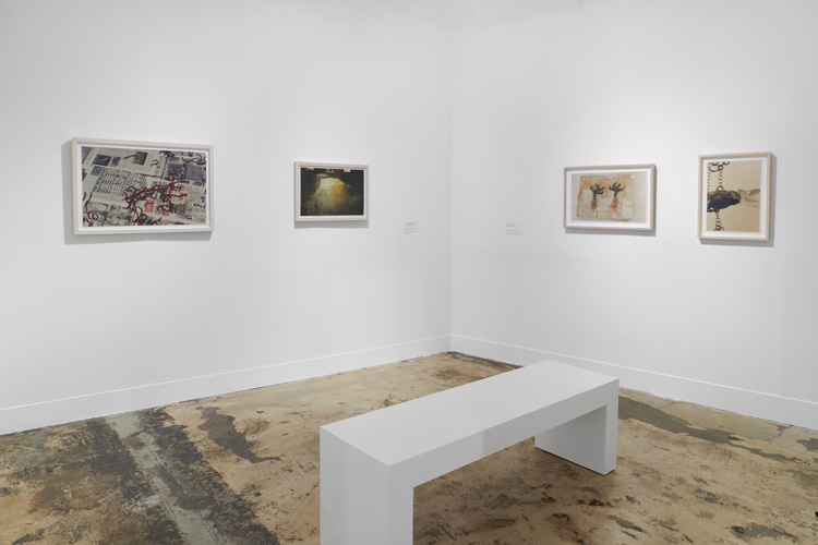 Kiki Smith: I am a Wanderer, installation view, Modern Art Oxford. Photo courtesy Modern Art Oxford.