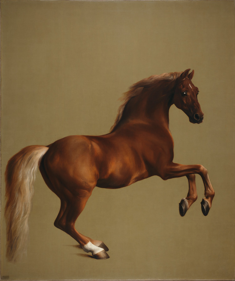 George Stubbs, Whistlejacket, c1762. Oil on canvas. © The National Gallery, London.