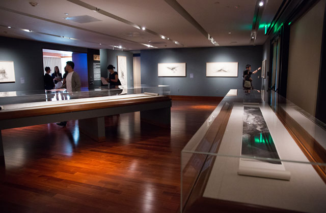Installation view, Crow Collection of Asian Art in Dallas.