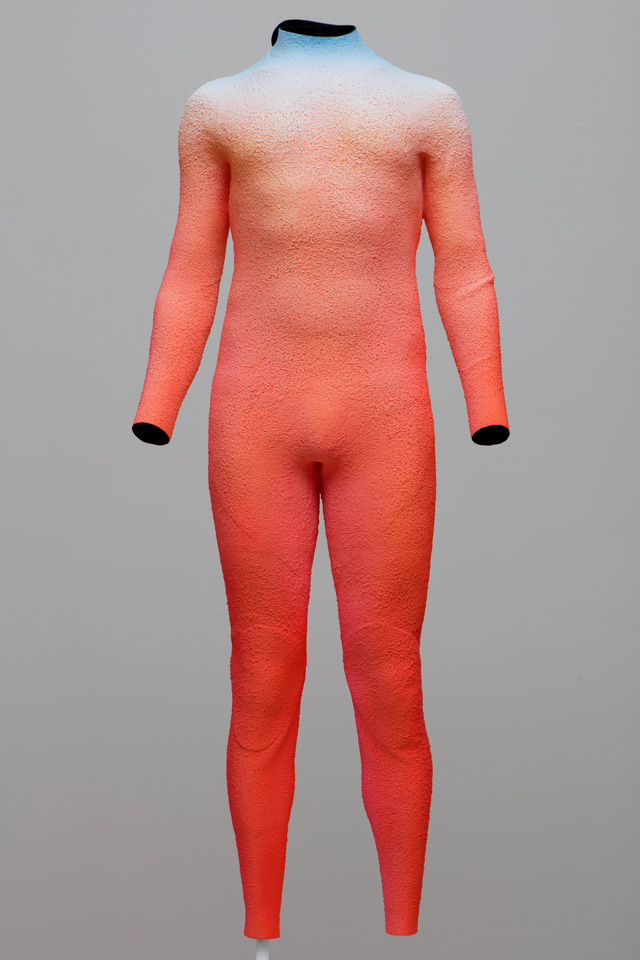 Alex Israel. Self Portrait (Wetsuit), 2015 Acrylic on aluminium, 