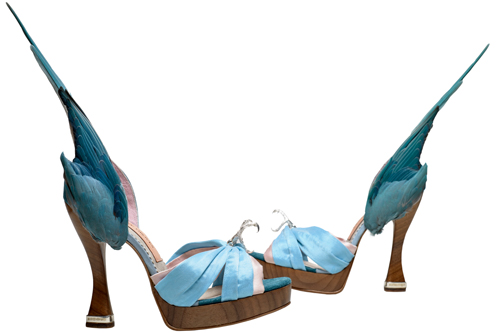 Parakeet shoes. Caroline Groves, England, 2014. Photograph: Dan Lowe.