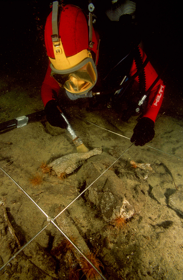 An archaeologist diver using a brush to clear remnants of fauna including a bovid jaw discovered under 2.5 cm of sand on the site of Canopus in Aboukir Bay. © Franck Goddio/Hilti Foundation. Photograph: Christoph Gerigk.