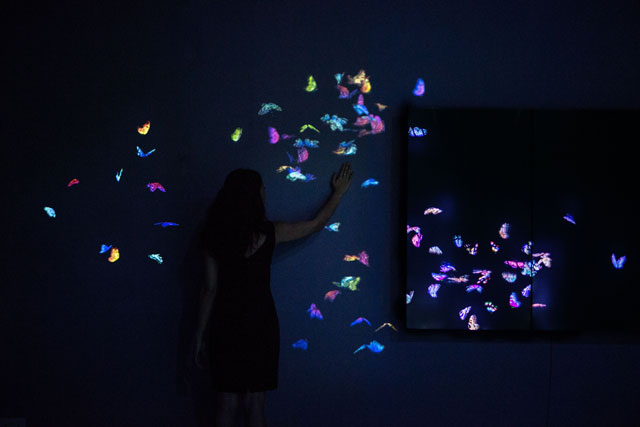 TeamLab. Flutter of Butterflies Beyond Borders, Ephemeral Life, 2016. Photograph courtesy teamLab © 2016.