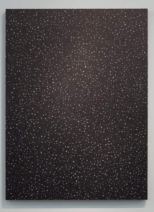 Piotr Uklański. Untitled (Blood and Bone), 2011. Ink and gesso on canvas. Courtesy of Dallas Contemporary.