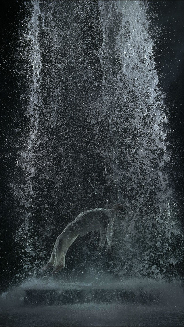 BILL VIOLA: I Do Not Know What It Is I Am Like