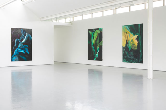 Clare Woods. Installation view (3), Victim of Geography exhibition at Dundee Contemporary Arts. Photograph: Ruth Clark.