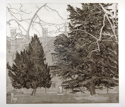 Joseph Winkelman. Fir and Yew, (Wadham College), 1998. Etching, 50 x 55 cm. © the artist.