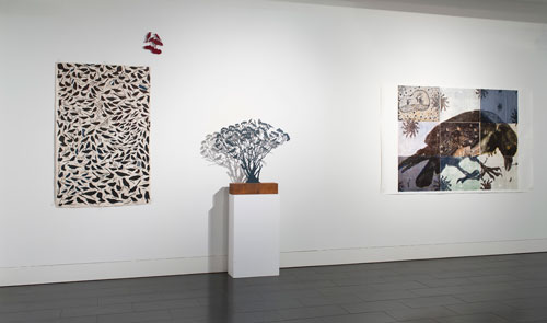 Installation view. The Wisdom of Birds: Martin King,  Judy Holding and Heather Shimmen. 8 May - 15 June 2013, Bendigo Visual Art Centre, Bendigo Australia.
