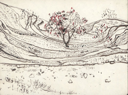 Xu Bing. 54-1, Apricot tree, southern Hebei, 1980–81. Pen and ink on paper, with children's water paint, 15.5 x 20.5 cm. © Courtesy of Xu Bing Studio.