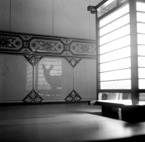 Vicente de Mello. Théâtre d'ombres, 2012. Photography from Silent City Series.
